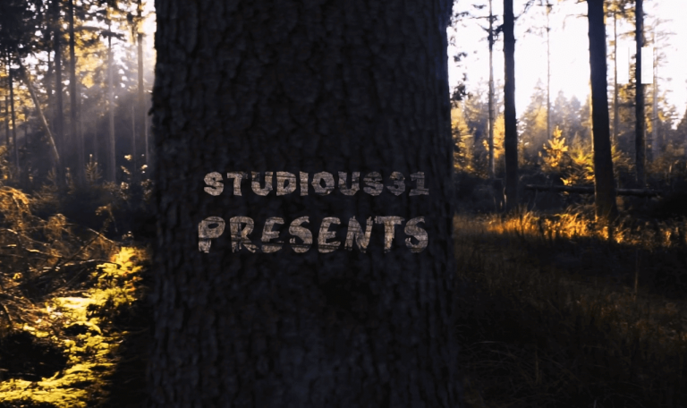 Forest-Intro-Studious31